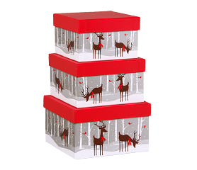 Festive Holiday Gift Boxes